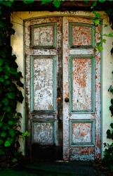 ivy-door.jpg